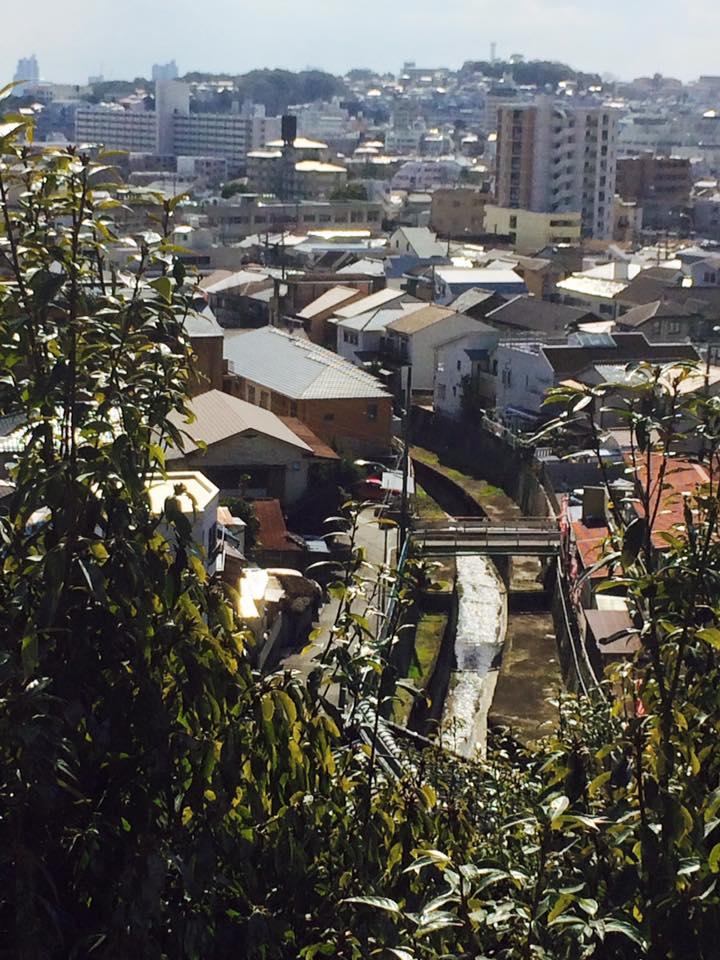 神戸の街を散策中