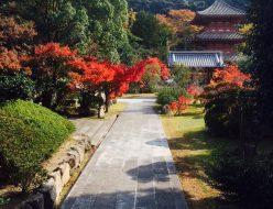 神戸市西区 国宝 太山寺
