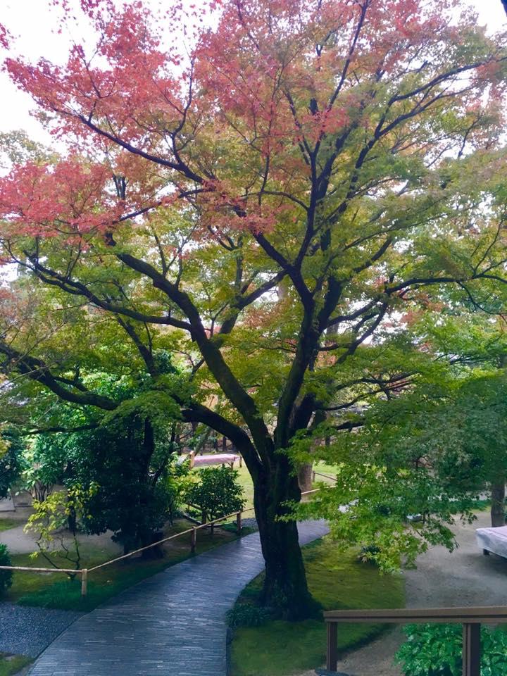 神戸御影界隈 散策