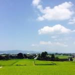 日本の夏風景