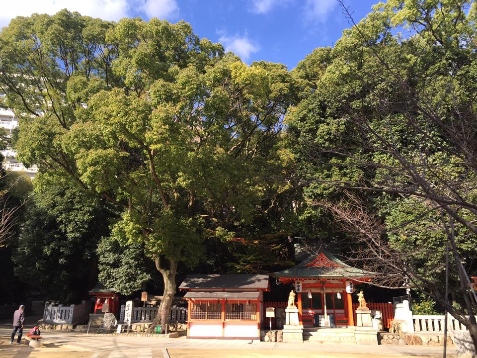 Kobe INK No.11 生田オレンジの饗宴