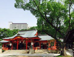 神戸 生田神社にて