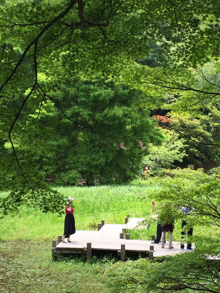 六甲にて森林浴