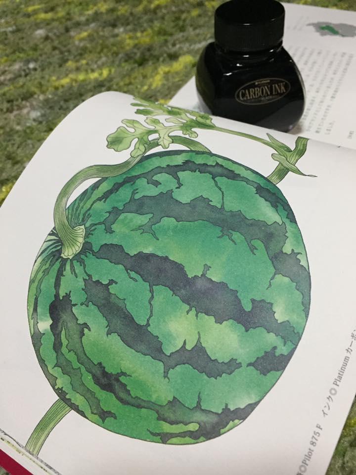 滋賀の美味しい食材画帖