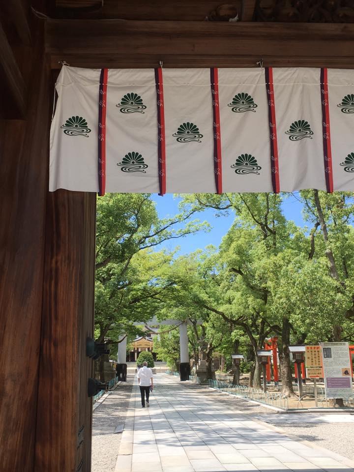 湊川神社にてライムグリーン