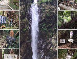 久しぶりのおでかけ~滝は危険がいっぱい?~