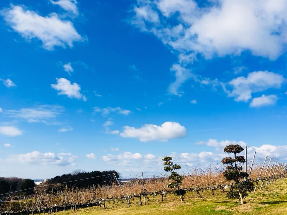 神戸農業公園