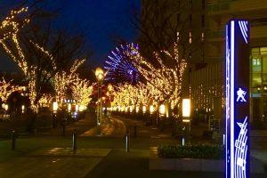 神戸煉瓦倉庫店へ通う路