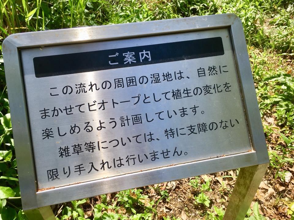 ビオトープ 神戸菊水公園へ