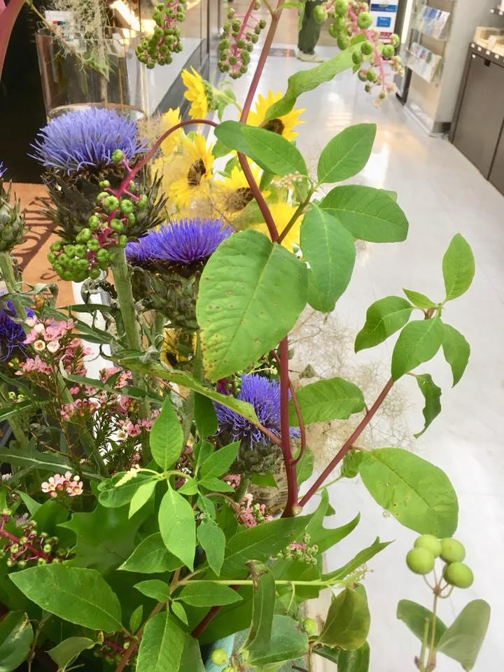 草花のウインドーディスプレイ