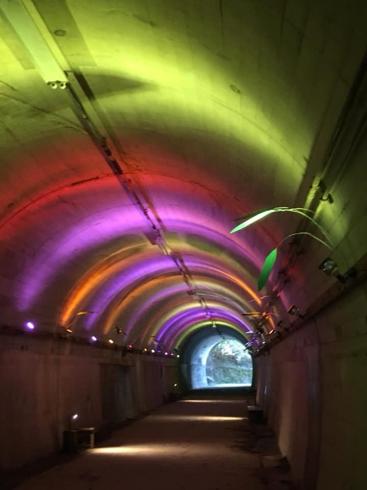 青葉トンネルのライトアップ