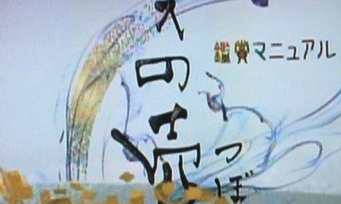 「美の壺」 NHK Eテレ再放送 情報 「書くよろこび万年筆」