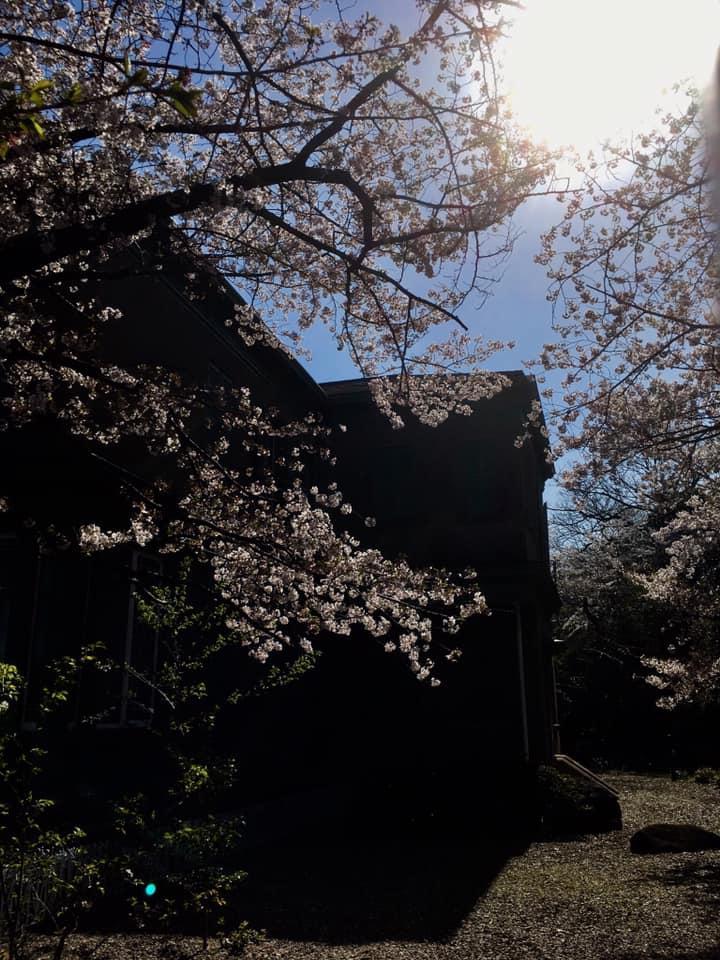 王子公園と旧ハンター住宅