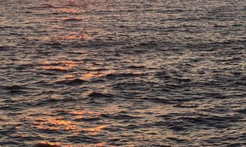 海峡ブルー&垂水アプリコット