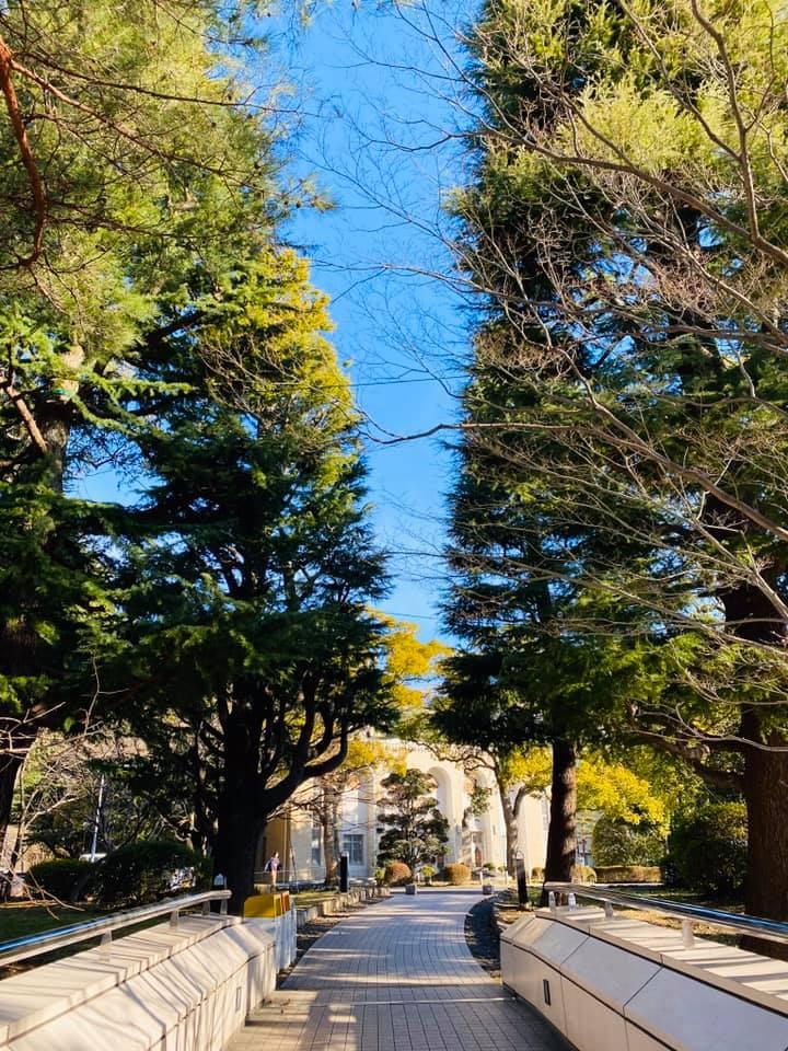 Kobe INK物語の眼でみた神戸大学